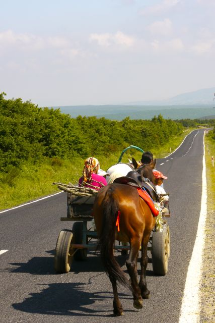 Roma met paard en wagen