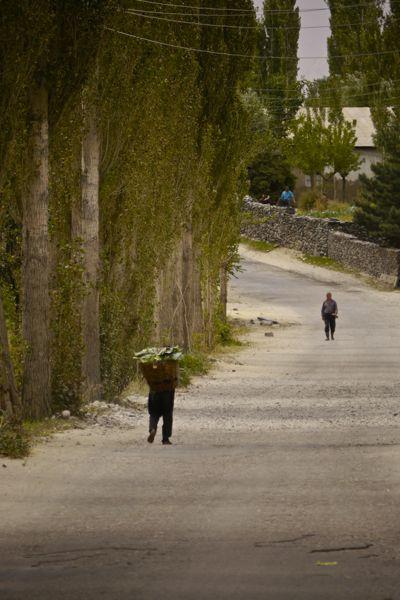 En dan is er soms ineens een dorpje met bomen