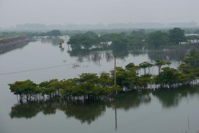 De kust in Noord-Vietnam
