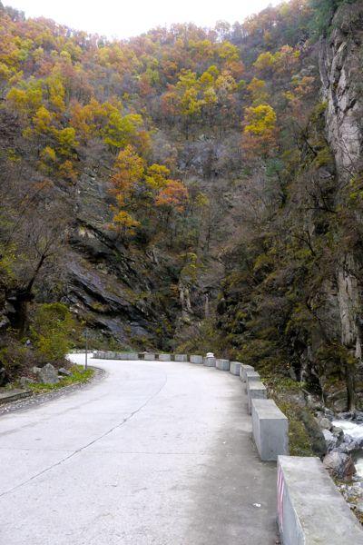 Bergweggetje in het herfstlandschap.
